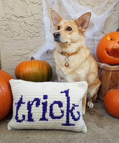 Eye Candy: Tricks & Treats